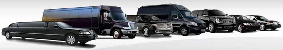 Prom Limo and Party Buses